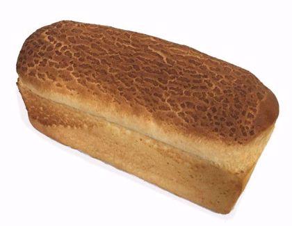 Melkwit brood tijger